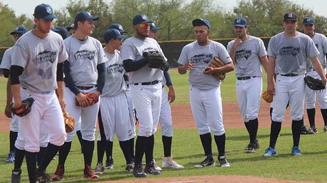 Beisbol, LMB: Sultanes iniciará la venta de boletos a partir de este fin de semana