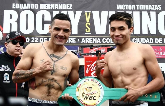 Box: Rocky y Vikingo listos para la guerra