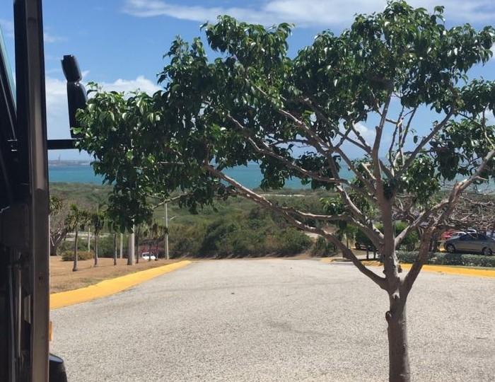 FIBA, LDA, Baloncesto: San Lorenzo ya está en ponce