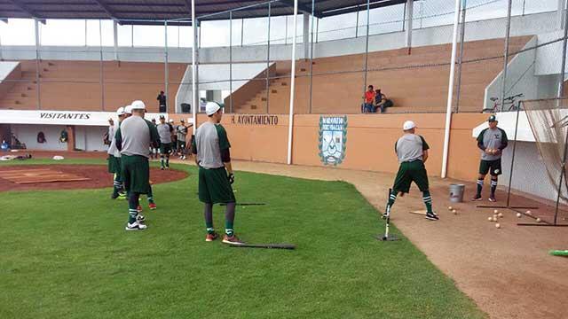 Beisbol, LIM: Leones va con todo a la Liga Invernal Mexicana 2017